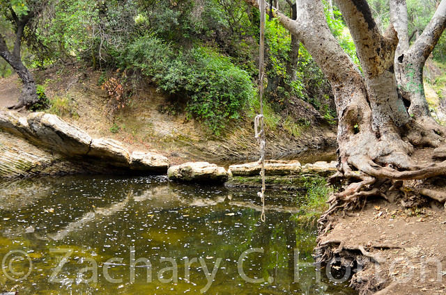 Rope swing over the water flickr photo sharing for Swing over water
