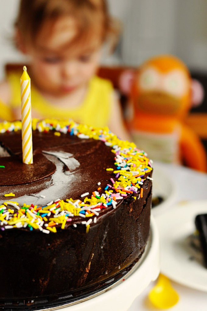 Double Chocolate Ice Cream Cake
