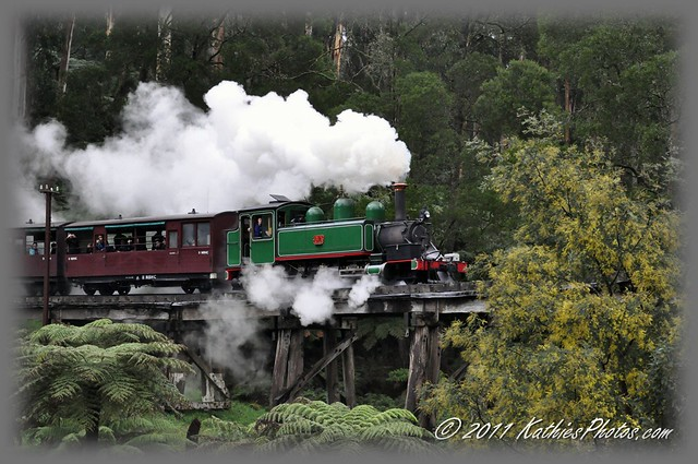 194-365 Puffing Billy on the Trestle Bridge
