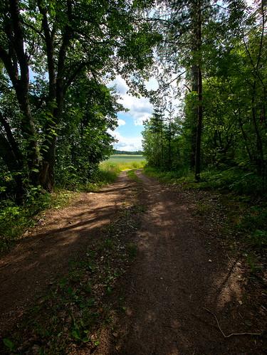road grass countryside shadows path wideangle shade hdr iitti photoengine lyöttilä panasonicgvario714mmf4asph panasoniclumixgh2