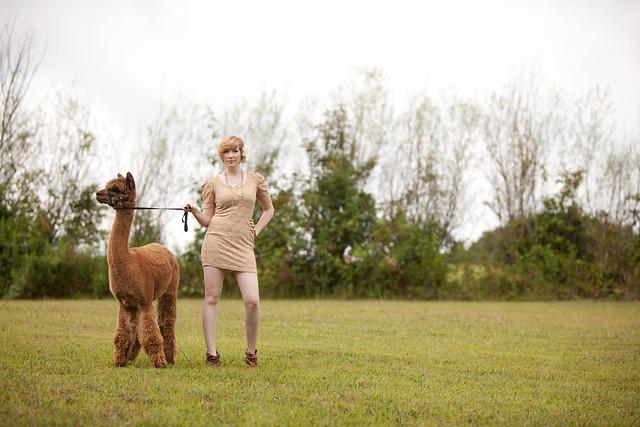 Kristen-alpacas-033-2