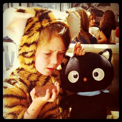 #tiger #chococat