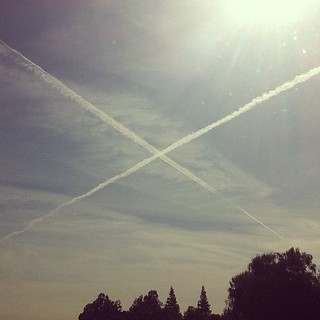 X marks the spot #chemtrails #skyline