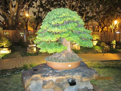 <p>Exposición Internacional de Flores en Taipei (Taiwan).</p>