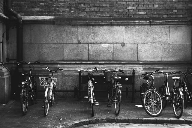 bikes / rowery