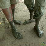 Muddy Feet - Sundarbans, Bangladesh