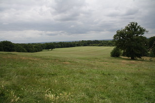 Oxleas meadows
