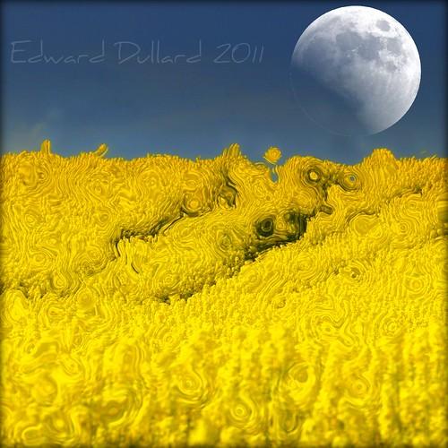 painterly nature field yellow landscape gold farm farming n eire impressionism agriculture paysage photoart canola irlanda rapeseed ierland edwarddullardphotographykilkennyireland