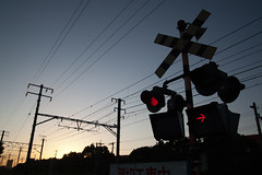 electrical supply, signaling device, overhead power line, electricity, traffic light,