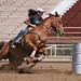 Barrel Racer Practicing by DennyMont