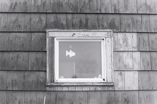 Beach House Window
