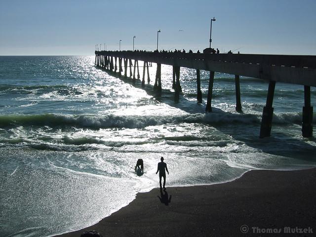 Collecting Bait, Pacifica Pier, California