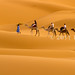 Travelling with Camels VII by Beum Gallery