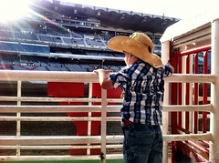 100 Day Countdown To The Calgary Stampede
