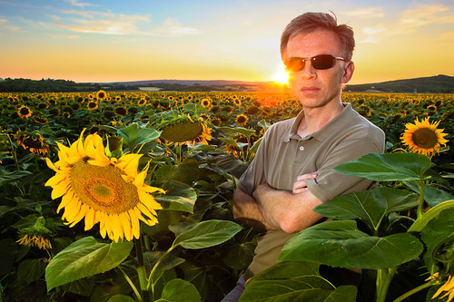 sunset selfportrait field self hungary sunflower balaton napraforgó