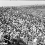 Baseball crowd at Harvard