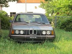 automobile, automotive exterior, vehicle, bmw 6 series (e24), land vehicle, luxury vehicle,