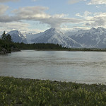 back to the Alsek river