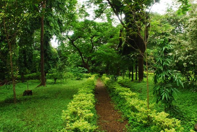 D Exhibition In Borivali : Sanjay gandhi national park borivali mumbai flickr