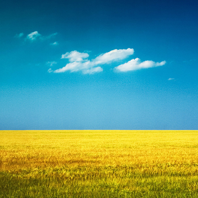 Clouds and yellow field. Ryazan, Russia, 2011.