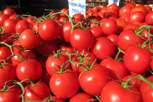 Hollywood Farmers Market: Tomatoes