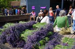 cartload of lavender