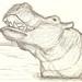 Animals in my Moleskine I by Dani Bravo [Els somnis de Bravo]