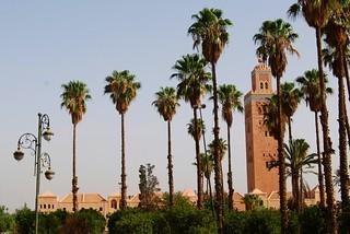 Marrakesh entre Palmeras