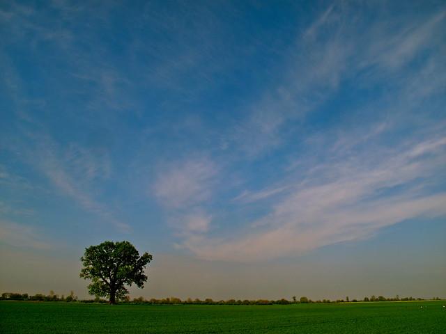 Polish skies