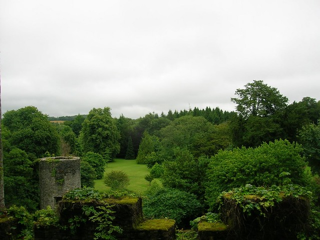 Travel to Cork : Blarney Castle - The Stone of Eloquence