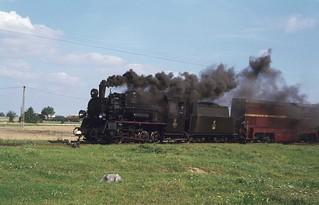 81. Px48 1760 auf dem Schmalspur Eisenbahnnetz Koło-Kutno. PKP.