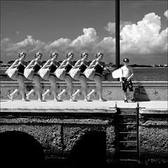 black & white italian sunday