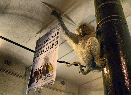 Chicken wire baboon at the Tower of London