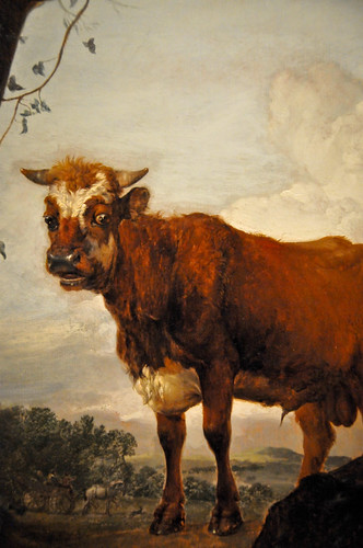 Paulus Potter - A Young Bull and Two Cows in a Meadow, 1649 at The Queen's Gallery Buckingham Palace London England
