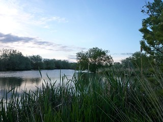 Trophy Pond