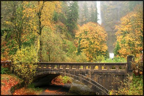 bridge autumn fall nature water beautiful season scenic multnomah mutlnomahfalls multnomahfallscolumbiarivergorge colorphotoaward