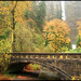 Near Multnomah Falls by garyclicks