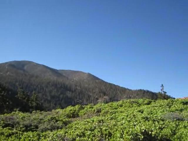 648 San Bernardino Peak Trail chaparral panorama