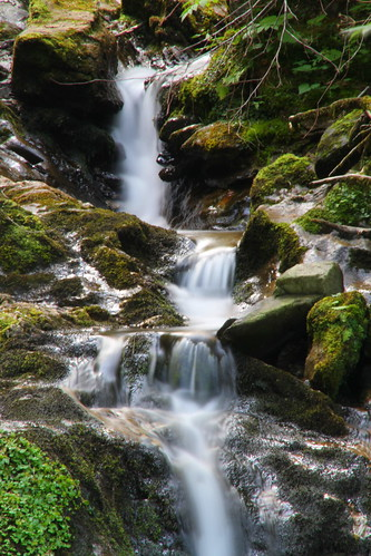 """wood water creek canon eos austria waterfall österreich wasser wasserfall stones steine bach 7d tamron wald klamm strechau rottenmann canoneos7d """"18270mm"""" strechaucreek strechaubach"""