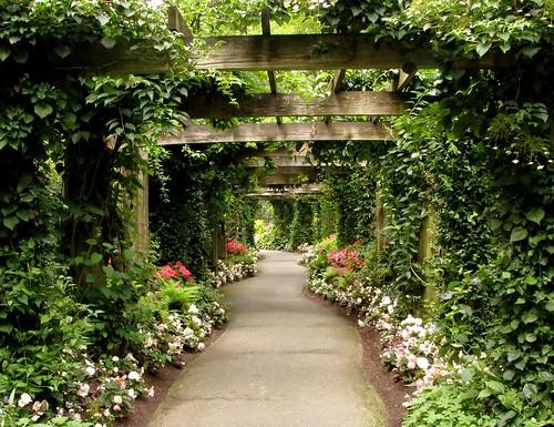 Pathway at Minter Gardens
