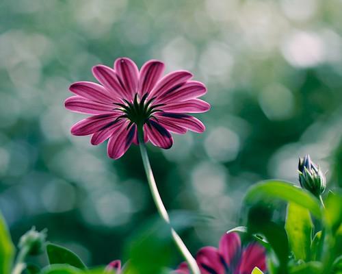 http://www.flickr.com/photos/29468339@N02/5888571859