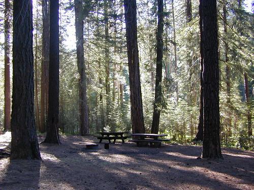 Snake Lake Camp Site