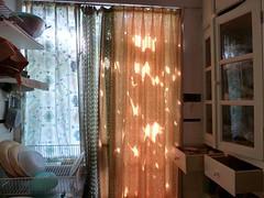windows/balconies 1