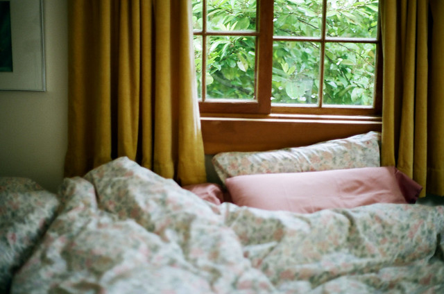 Cozy Bed Guest Room