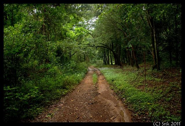 Aaralam wildlife sanctuary