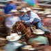 Calf Roper Leaves the Chute by DennyMont