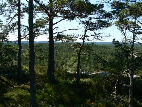 sweden sverige ronja dalsland mellerud sörknatten ronjaland