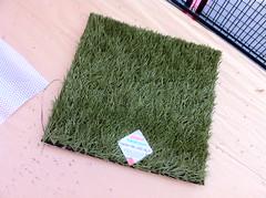 algae(0.0), seaweed(0.0), flower(0.0), soil(0.0), wheatgrass(0.0), lawn(0.0), leaf(1.0), grass(1.0), artificial turf(1.0), herb(1.0), green(1.0), flooring(1.0),