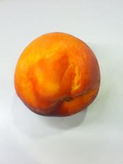 clementine(0.0), tangerine(0.0), persimmon(0.0), orange(1.0), apricot(1.0), peach(1.0), produce(1.0), fruit(1.0), food(1.0), mandarin orange(1.0),