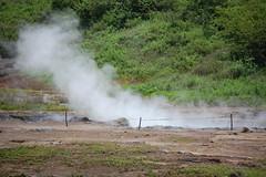 soil, geyser,